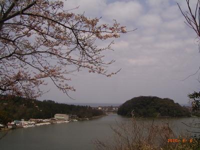 裏山から見た日本海